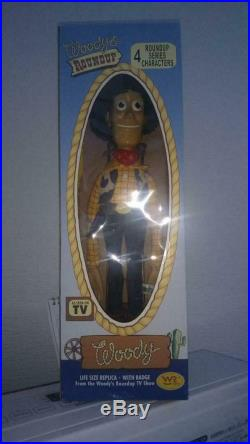 Toy Story 2 Roundup Woody Color Version Young Epoch Pixar Movie Figure Doll